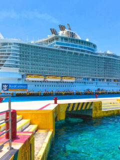 Royal-Caribbean-Could-Move-Home-Port-To-Mexico-Amid-Restart-Delays-In-US-1024x696
