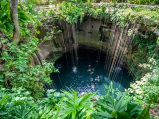 Take a dip in an ancient and absolutely breathtaking Cenote for an experience of a lifetime! These sinkholes are full of clean water, unique plant life and are known to be up to 119 meters deep in some parts of the Mexican Caribbean. Here are 5 highly attractive cenotes to add to your bucket list, and some things to know along the way.
