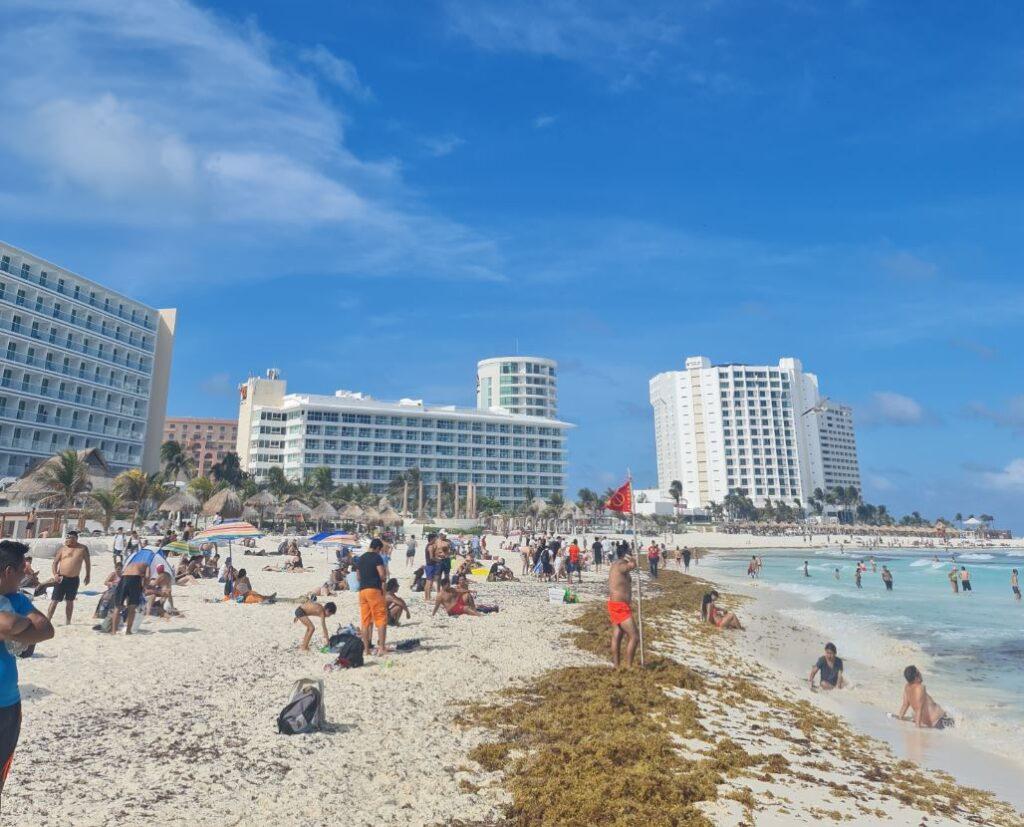 Sargassum on beach in cancun hotel zone
