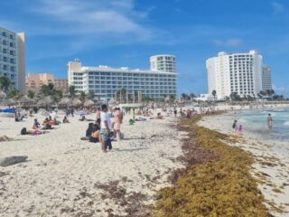 Seaweed Piles Up On Cancun Hotel Zone Beaches