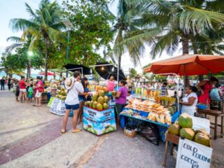 Just like beaches, Cancun has no shortage of markets to check out. From luxury products to artisanal crafts, vintage items and of course, incredibly fresh fruit and vegetables - these markets have everything you need and then some. Beyond the typical touristy elements of the island, you can get a real taste of the true vibrancy of Mexican culture while wandering through the local markets. Grab a fresh juice, a couple souvenirs and perhaps take in the essence of a mariachi band at one of these 7 best markets in Cancun