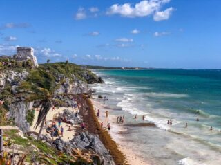 Large Amounts Of Seaweed Expected In Cancun And The Mexican Caribbean