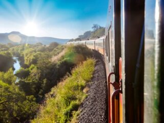 Work on the northern section of the highly anticipated Maya Train is to begin in October, confirmed Head of the National Fund for the Promotion of Tourism (Fonatur), Rogelio Jiménez Pons this week. This part of the project will see the first of the new railway lines laid between the key tourist destinations of Cancun and Playa del Carmen.