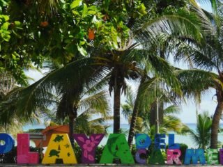 When travelling to any Mexican Caribbean destination, you're always going to have so many different options for excursions. Especially if you're staying at a resort. Here are 5 popular private tours in Playa del Carmen to consider on your next tropical adventure.